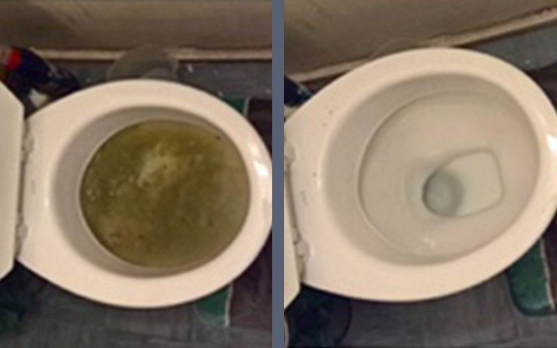 Toilet Drains at 1st Drain Clear in Chislehurst, Kent